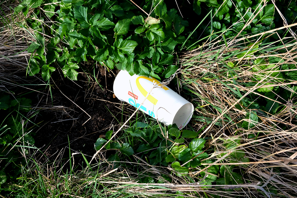 A photograph of a discarded McDonald's take-away cup in a grass verge.